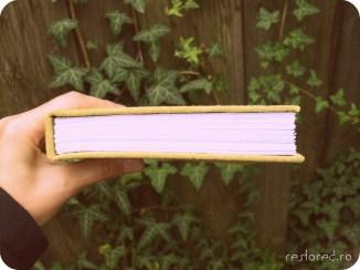 jurnal piele africa4