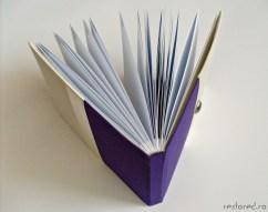 guestbook violet crem2