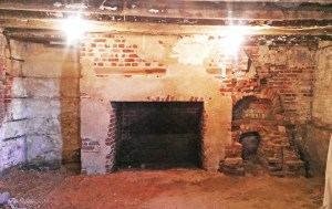 Basement cook fireplace May 2015