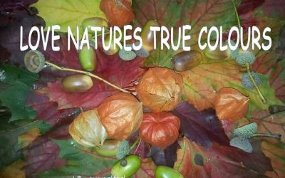 In ayurveda we look at your own beautiful nature