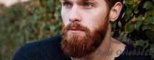 best men's beard dye