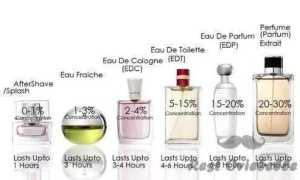 Types of Colognes