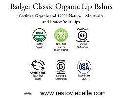 Badger Balm Broad Spectrum Lip Balm Stick 1