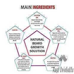 All Natural Maxx Beard Growth Spray 1