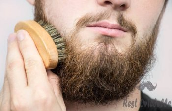 hand of barber brushing beard. barbershop customerfront view. beard grooming tips for beginners. - beard brush s and pictures How To Choose The Best Beard Brush