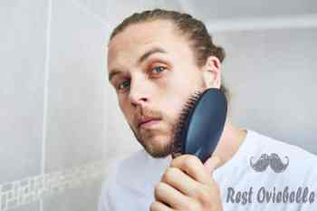 my beard is well cared for - beard brush s and pictures How to use your beard brush?