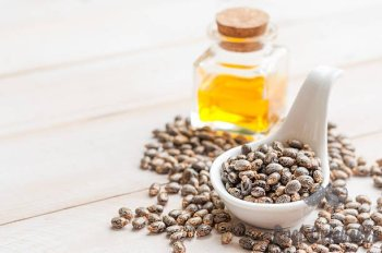 Things to Consider When Buying Castor Oil
