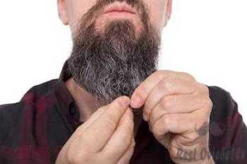 Benefits Of  Using The Best Beard Balms