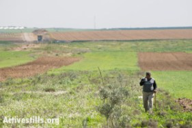 """A Palestinian farmer walks through fields near Gaza's eastern border, Al Montar, February 17, 2014. An Israeli military post is seen in the distance to the left, with the border indicated by the dark green areas passing through it. Human rights organizations have documented dozens of cases of Israeli army gunfire at persons who posed no threat and were well outside the 300-meter so-called """"no-go zone"""" imposed by the Israeli military inside Gaza's borders. In many cases, no warning was given before soldiers opened fire."""