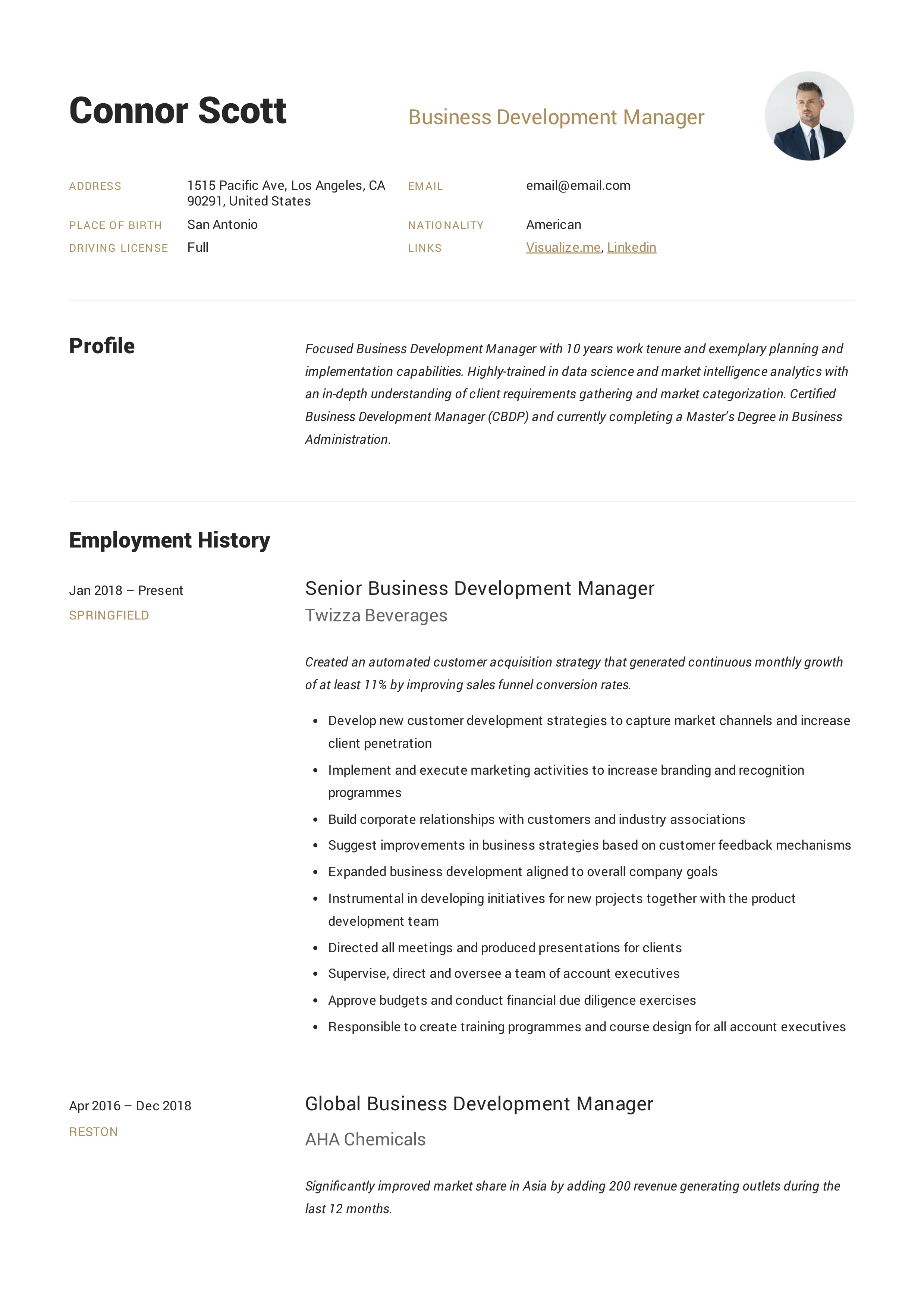 Business Development Manager Resume Amp Guide