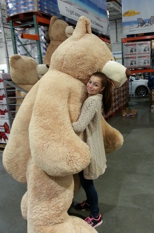 Retail Hell Underground Costco Selling 7 Foot Teddy Bear