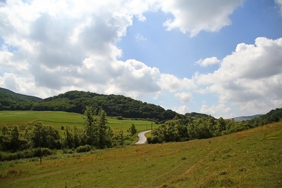 natura Transilvania 3