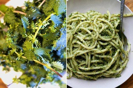 spaghete-cu-pesto-de-urzici