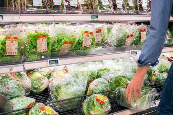 hands-healthy-lettuce-store.jpg