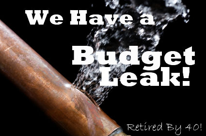 We Have a Budget Leak!!!!!