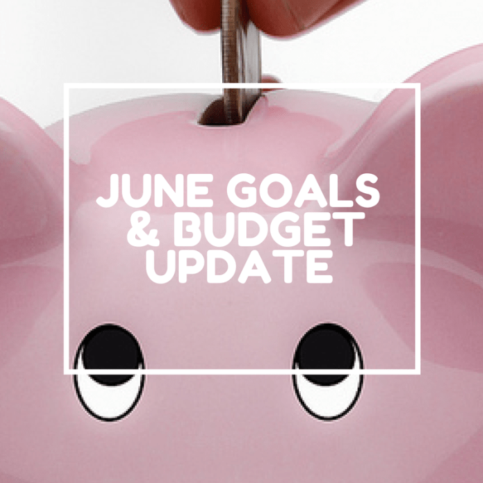 July Goals and Budget Update