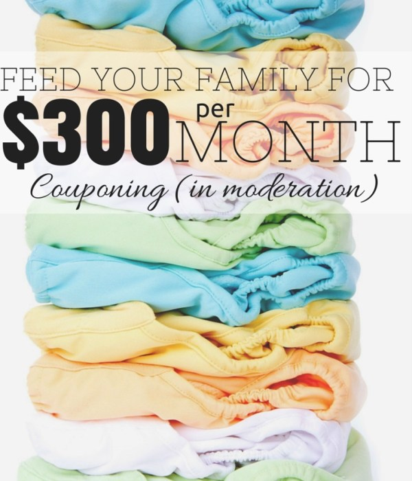 Feed Your Family on $300 a Month – Part 3