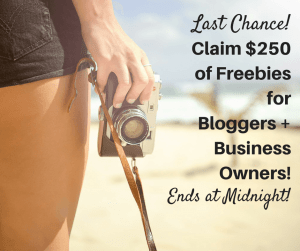 Don't miss your change to work from home, change your life, and of course, claim $250 worth of freebies for your business or blog