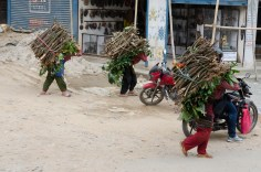 Women hauling firewood