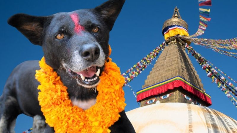 Kukur Tihar trip to Nepal