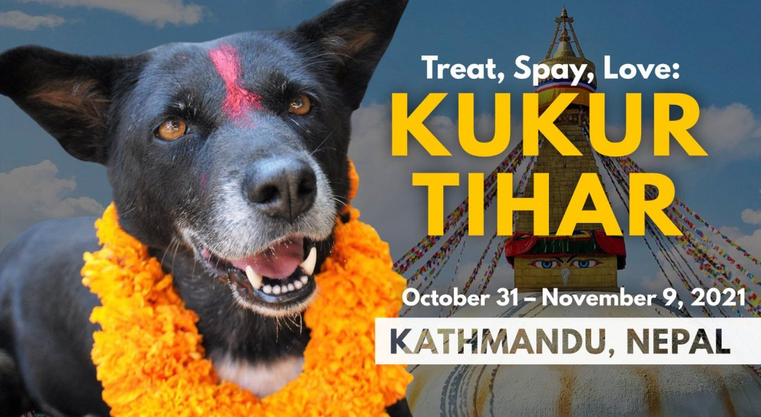 Travel to Nepal for Kukur Tihar dog holiday