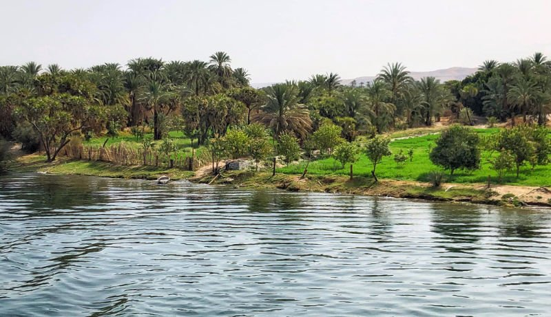 The banks of the Nile River as seen from a Nile cruise.