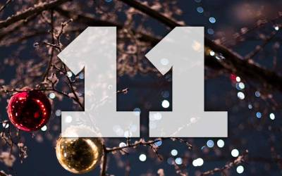 """Advent calendar day 11: Win the online course """"Heelwork for gun dogs"""""""