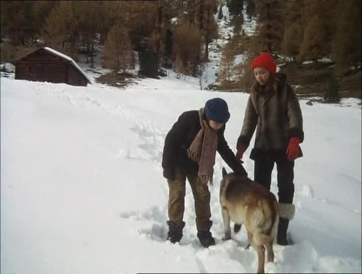 Stream: Die Spur des Wolfes (1975)