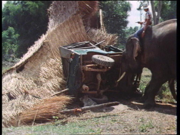 Die-Killer-aus-dem-Todescamp-aka-The-Killer-Elephants-erscheint-von-AVV-auf-DVD
