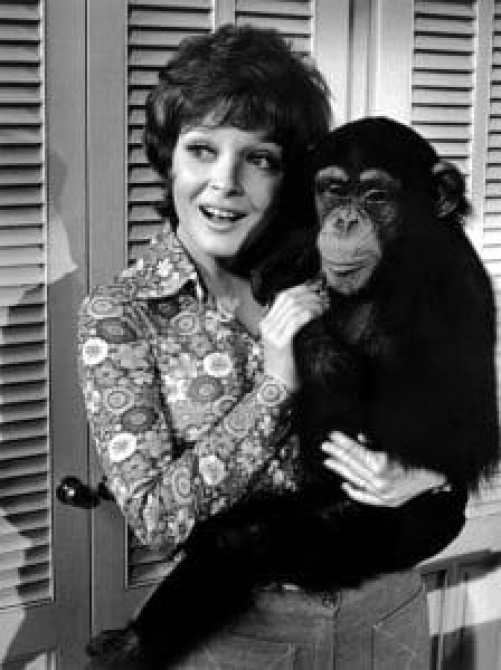 ME AND THE CHIMP, Anita Gillette, 1972.