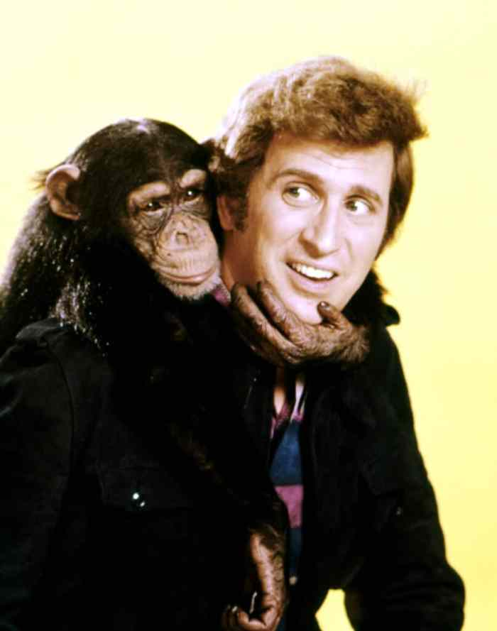 ted-bessell-me-and-the-chimp