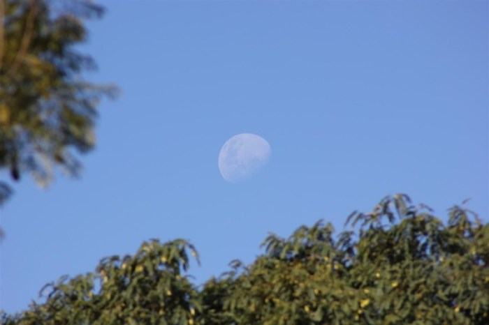 Moon coming out during the day