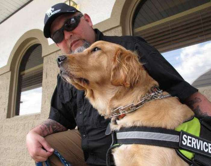new bill covers cost of service dogs for veterans with PTSD