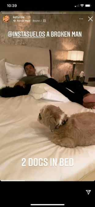 mark consuelos two dogs in bed lena chewie kelly ripa