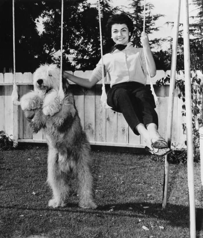annette-funicello-the-shaggy-dog