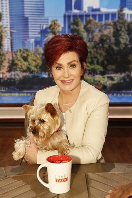 THE TALK, (from left): co-host Sharon Osbourne with her dog, Charlie,