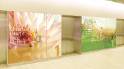 Moxie by Takeform is a graphic panel system that is a direct print on a rigid, lightweight aluminum composite panel.