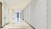Interior finishes manufacturer Baresque announced the North American launch of Zintra on Zintra.