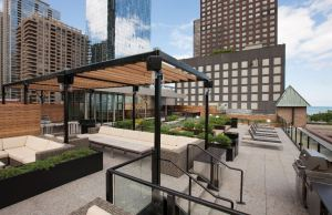"The landscape and project architects decided the roof's grade changes would create different outdoor ""rooms""."