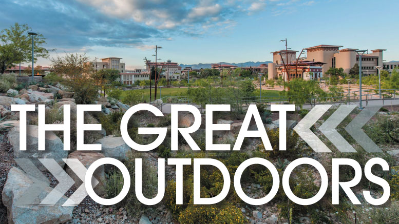 """At the forefront of this movement toward """"greening"""" our landscapes is the Sustainable SITES Initiative (SITES), a program based on the understanding that land is a crucial component of the built environment and can be planned, designed, developed, and maintained to avoid, mitigate, and even reverse the detrimental impacts of urbanization and development."""
