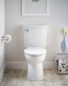 The VorMax water-saving toilets deliver a jet of water to thoroughly scrub the bowl with every flush.