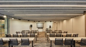 Using Seem 1 Acoustic helps achieve the cleanliness of having one system to address both lighting and acoustics.