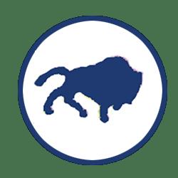 Buffalo Blues logo from 1914-