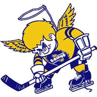Minnesota Fighting Saints logo from 1973-1977