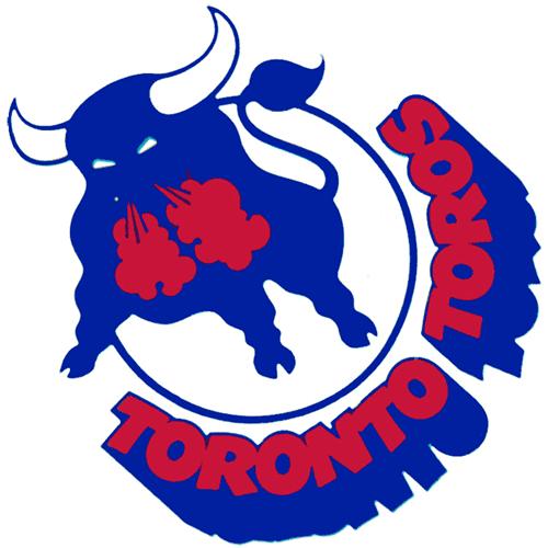 Birmingham Bulls logo from 1974-1976