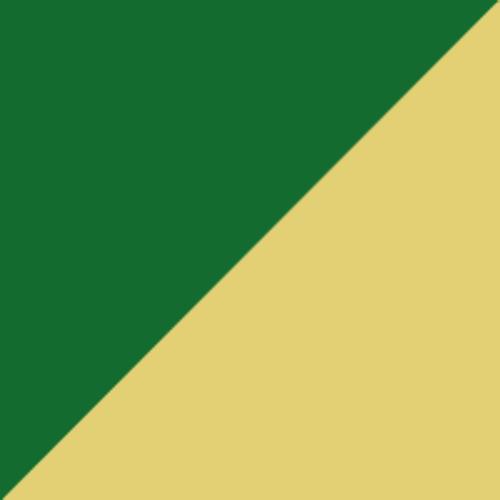 Boston Shamrocks logo from 1936-