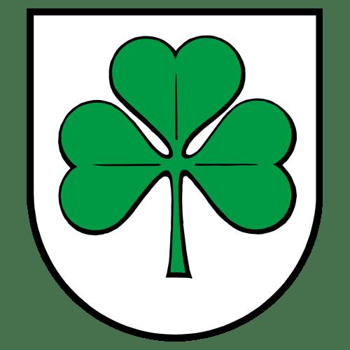"New York ""Original"" Celtics logo from 1800-"