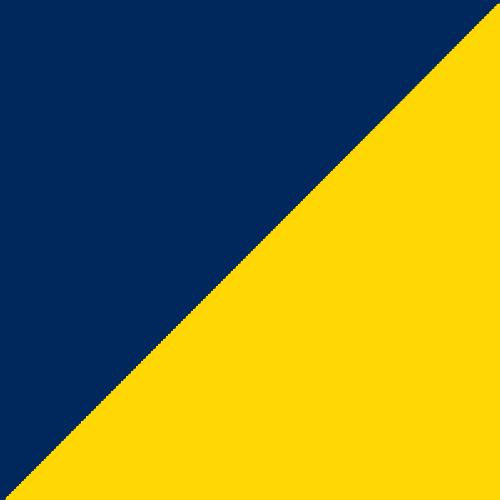 Pittsburg Stars logo from 1902-
