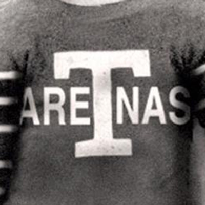 Toronto Maple Leafs logo from 1918-1919