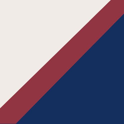 Washington National logo from 1861-1870